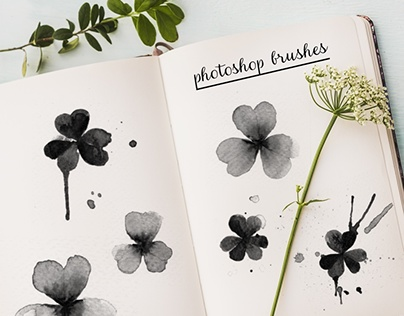 clover watercolor photoshop brushes