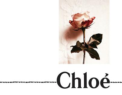 Chloe Lookbook inspired by Georgia O'keeffe.
