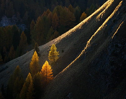 Fiery Season in the Dolomites