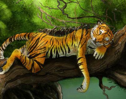 """Resting Tiger"""