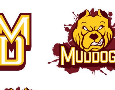 High School Summer Baseball Team Uniform and Logo