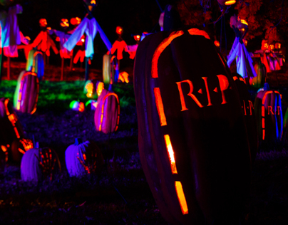 The Great Jack O'Lantern Blaze 2013