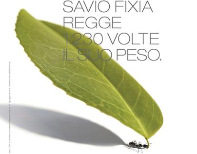 Savio - Communication projects 1