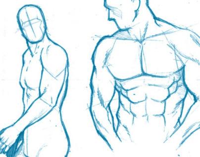 Studying The Human Figure
