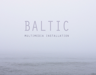 BALTIC - multimedia installation