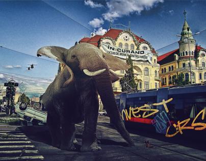 Oradea downtown