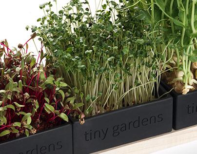 Tiny Garden: ROOT