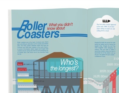 What you don't know about Roller Coaster