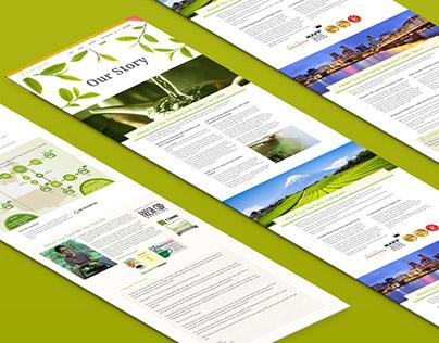 Design, adaptive HTML&CSS, pixel perfect, shopify