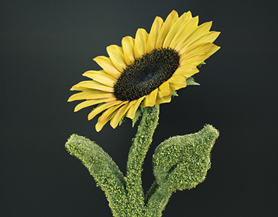 Vegan Logo - Sunflower