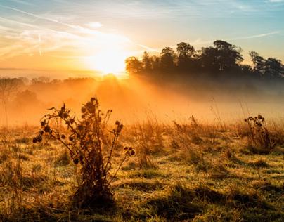 A Burning Misty Morning