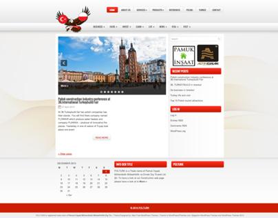 Pol-Turk International Logo & Web Project (2012)
