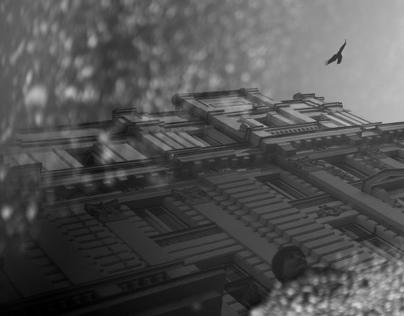 Urban Capture - Street Photography