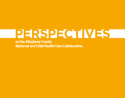 UPMC Insurance Services Division Perspectives Report