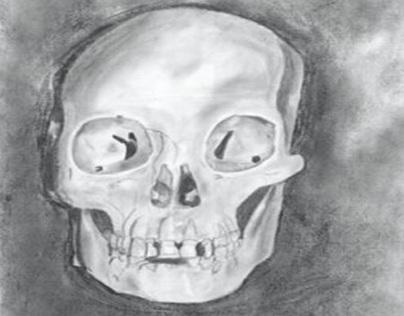 anatomy_study