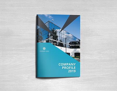 Professional Company Profile Design
