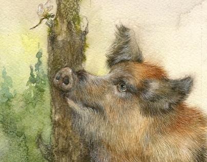 "illustration for the book ""Lobo"""