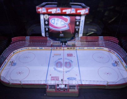 Montreal Canadiens Rink