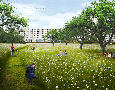 Project of the green surrounding street in Wrocław, PL
