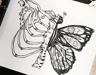 galaxyfly