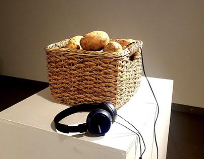 POTATO, potato