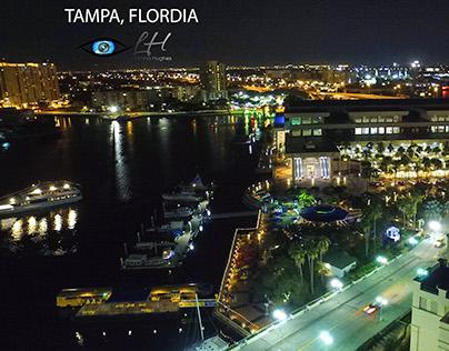 Tampa Nights