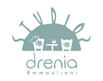 Logo & Visual designs for DreniaStudios ,2017