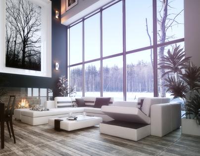 interior design ( living room )