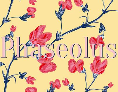 Phaseolus flower pattern design