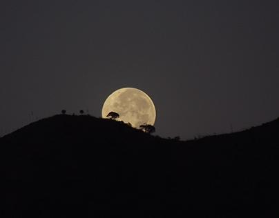Luna al amanecer