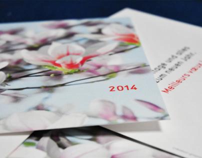 Christine Metayer-Apfel / cartes de voeux