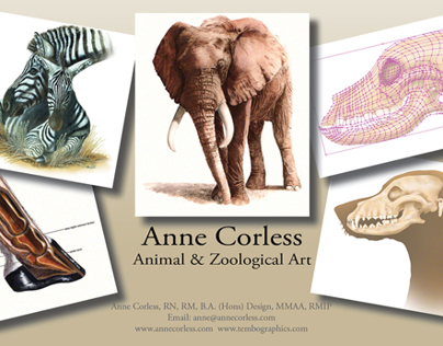 Examples of animal artwork in different media