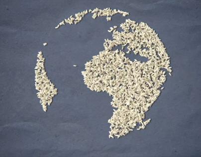 Rice Master's TV Commercial Ghana Africa