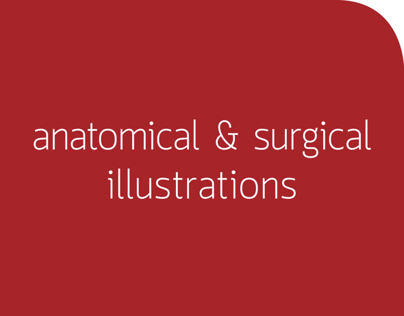 ANATOMICAL & SURGICAL ILLUSTRATIONS