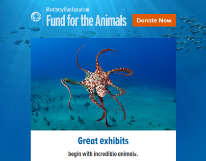 Fund for the Animals Microsite