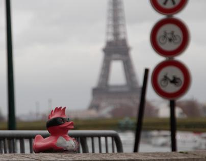 Tefi's Street Art Punk Duck