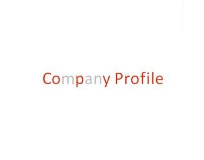 Copy Profile - Portfolio in sintesi