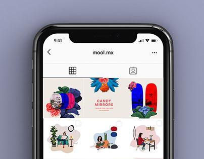 Feed Mool (collage e ilustración)