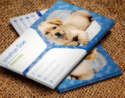 Business Card Veterinary