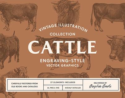 Cattle – Vintage Illustration Set