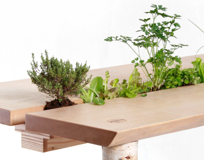 Forage Dining Table