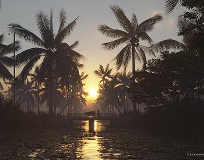 Sunset of Kerala backwaters !
