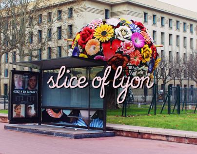 Slice of Lyon