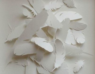 Paper and Birds