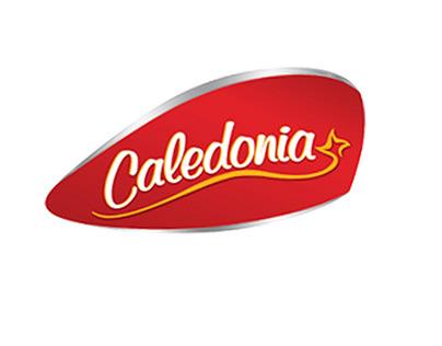 Animación Caledonia