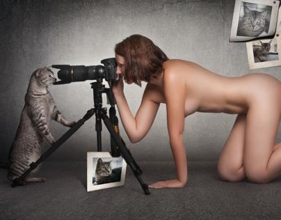 cat-shooting