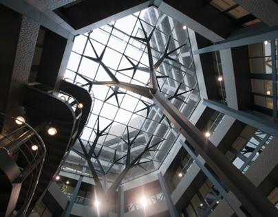 FremantleMedia Office Design & Fit-Out