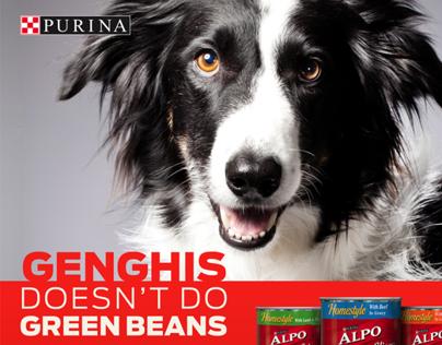 Purina – Shopper Marketing Campaign for Value Brands