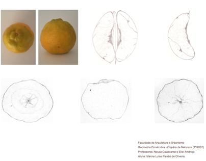 1º semestre - Primeira Prancha - Geometrização Natureza