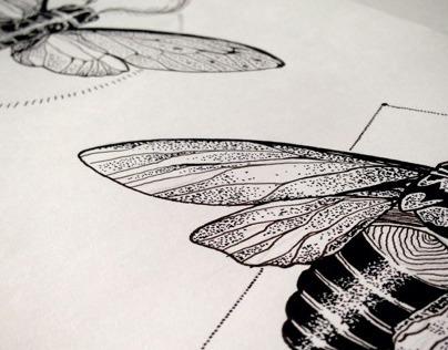 Dotwork Cicadas